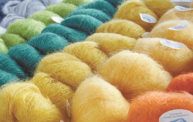 Rencontre internationale à El Hajeb sur la filière laine