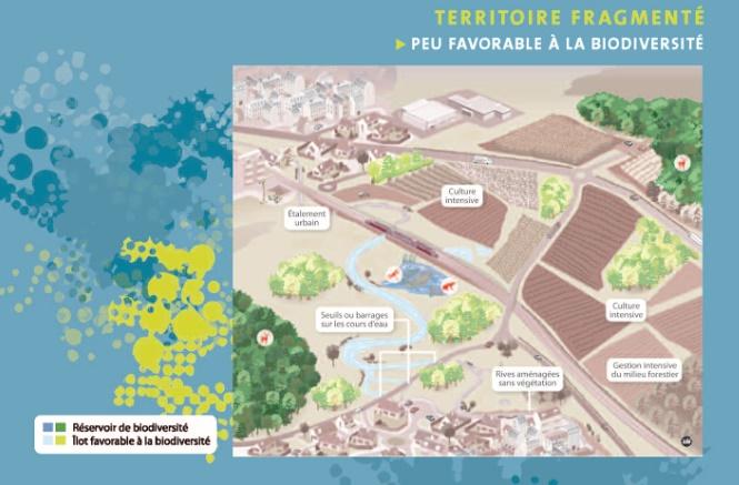 Inspections régionales de l'urbanisme et de l'aménagement du territoire