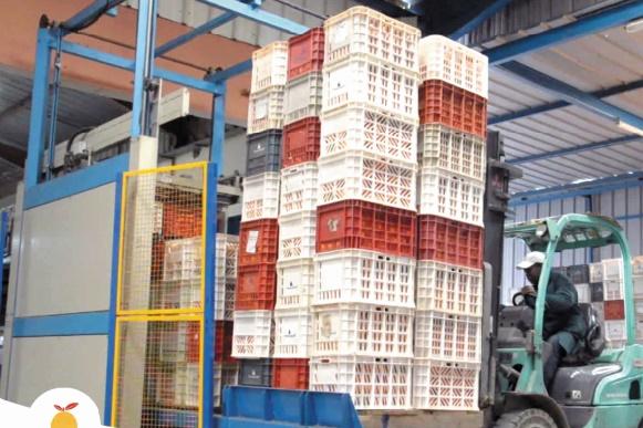 Lever la suspension sur les exportations des agrumes vers les Etats-Unis