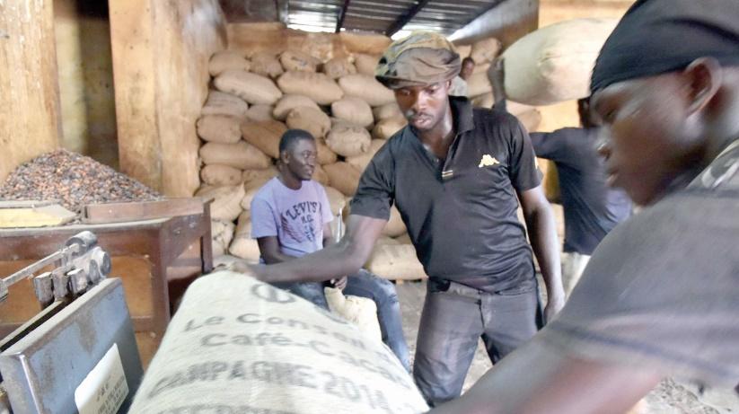 Côte d'Ivoire : Une croissance économique sans création d'emplois