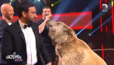 """Un ours effraie Gad Elmaleh et Cyril Hanouna dans """"Le Gros Show"""""""