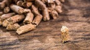 Distribution de denrées alimentaires et de bois de chauffage au profit de régions affectées par le froid
