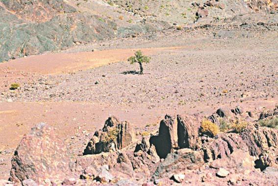 Pourquoi y a-t-il sécheresse au Maroc ?