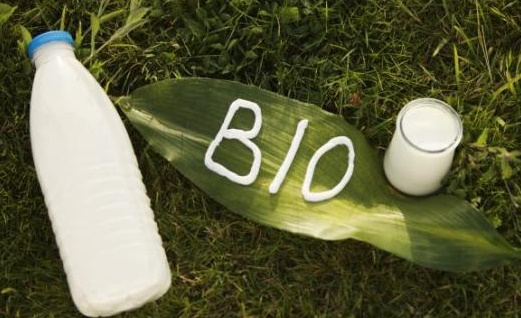Le lait et la viande bio beaucoup plus riches en oméga-3