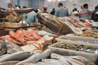 Les recettes issues du commerce du poisson au Maroc ont atteint 2MMDH