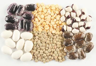 Vers la création d'une interprofession de la filière des légumineuses alimentaires