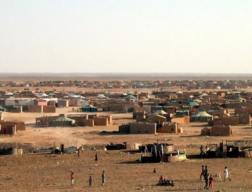 Plusieurs eurodéputés réclament le recensement des Sahraouis séquestrés à Tindouf