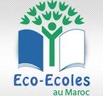 Le label Pavillon vert décerné à l'école Alhay Almohammadi à Boudnib