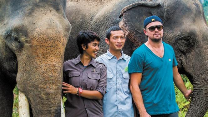 DiCaprio dans la jungle indonésienne pour soutenir des défenseurs de la nature