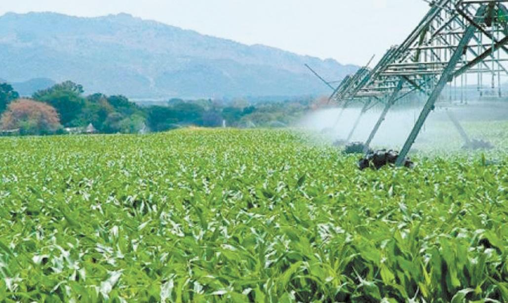 Le secteur de l'irrigation se trouve confronté à plusieurs contraintes