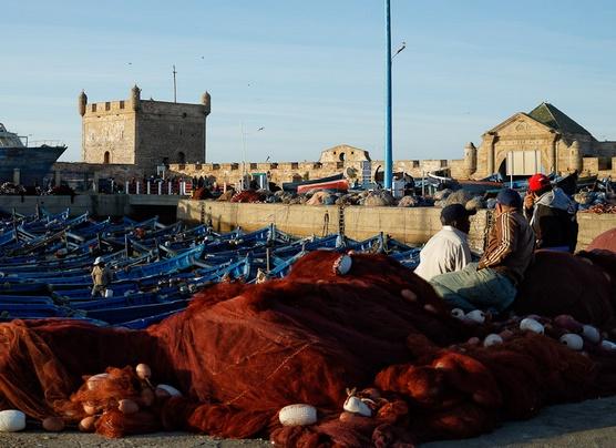 Hausse de 6% des quantités de poisson débarquées au port d'Essaouira