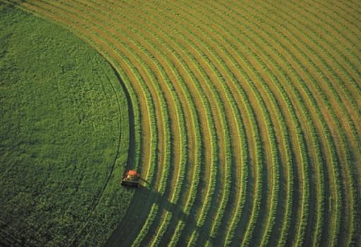 Pour une agriculture compétitive, durable et résiliente