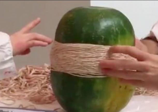 Insolite : Explosion d'une pastèque