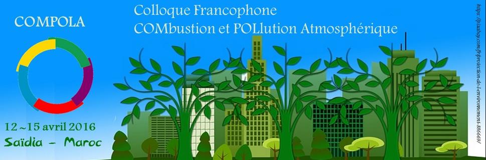 Colloque sur la combustion et pollution atmosphérique