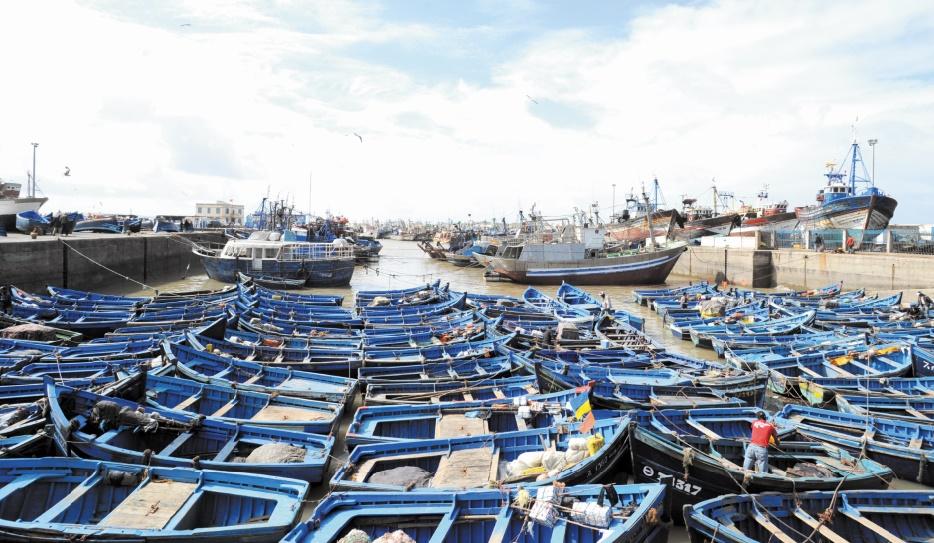 Malal évoque l'impact écologique de l'extension du port d'Essaouira
