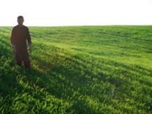 Le revenu des agriculteurs multiplié par 2,7 grâce au DRIP