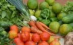 La qualité garantit un développement durable aux produits locaux