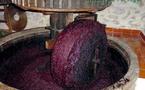 Pour une valorisation des sous-produits de l'olivier