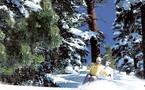 Promotion du ski alpin dans la station de ski et de montagne de Michlifen