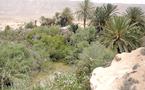 Le tourisme oasien, levier de développement