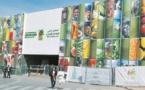 Lancement à Meknès de l'Alliance africaine pour le développement de la formation professionnelle