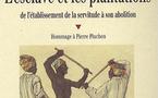Le dernier ouvrage de Philippe Hrodej «L'esclave et les plantations».