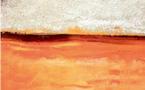 Ahmed Hajoubi expose ses œuvres récentes à l'IF du Nord : Un océan agité de couleurs ocres