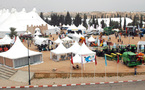 Le SIAM en est à sa quatrième édition : L'agriculture marocaine à la croisée des chemins