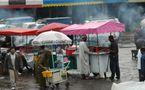 Le Centre antipoison de Rabat dresse son bilan : Plus d'intoxications alimentaires et moins de piqûres de scorpions