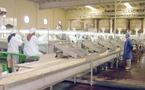 Le niveau actuel des commandes inquiète les industriels : Les ventes locales sauvent la production nationale