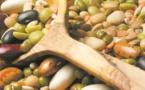 La région de Casablanca-Settat au top en matière de production de céréales et de légumineuses
