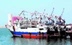 Lancement de l'opération d'identification des barques par radiofréquence
