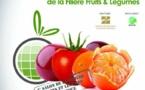 La région de Souss-Massa exporte au niveau national plus de 86% de primeurs et plus de 96% de tomates