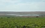 Le projet d'irrigation de la zone Chtouka en eau de mer dessalée sur la bonne voie