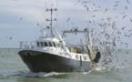 La position de l'avocat général de la CJUE exaspère les pêcheurs espagnols