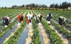 Une bourse des matières premières au service des pauvres en Ethiopie