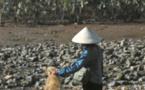 Les mers d'Asie, poubelles plastiques de la planète