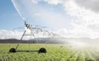 Pour une mise en valeur des terres sahariennes : Aménagement hydro-agricole à Boujdour