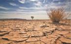 De nouveaux soutiens financiers dédiés aux mesures d'adaptation au changement climatique
