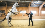 "Mario Luraschi, ""l'homme qui parle cheval"" avec ""Fascination"""