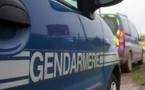 Insolite : Voler une voiture de gendarmerie
