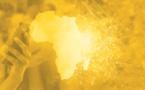 L'Afrique connaît une véritable transformation de son modèle économique