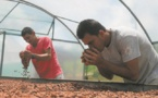Le cacao bio commence à sortir des petits paysans brésiliens de la misère