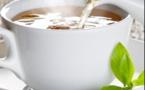 Le thé pour combattre l'Alzheimer
