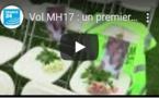 Vol MH17 : un premier procès par contumace s'ouvre aux Pays-Bas