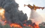 La Forêt diplomatique de Tanger ravagée par le feu