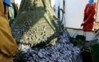 L'Union européenne et le Maroc reprennent leurs négociations : Nouvel accord de pêche en perspective