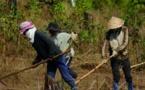 La guerre des terres fait rage du nord au sud du Vietnam