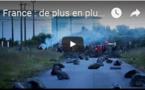 France : de plus en plus de sites pétroliers bloqués par la grève