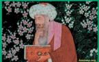 "Ibn Arabi ""Doctor maximus"""